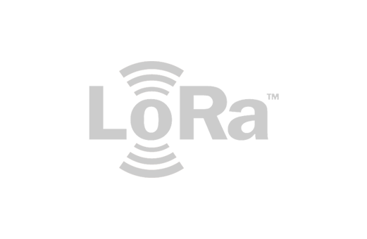 connexin-iot-smart-network-of-networks-lorawan-lora-logo-grey-5